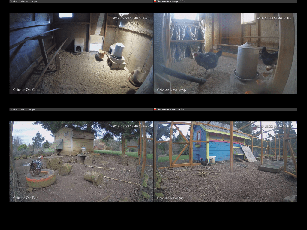 Screenshot of cameras