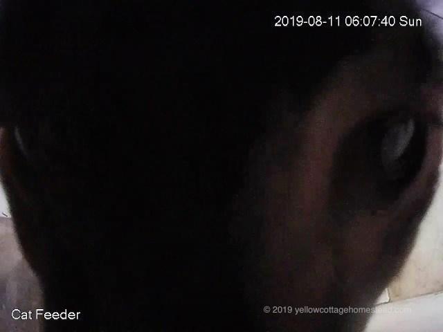 Up close