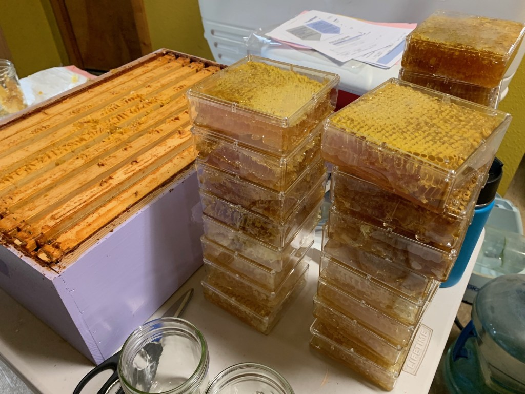 Hive box, comb honey