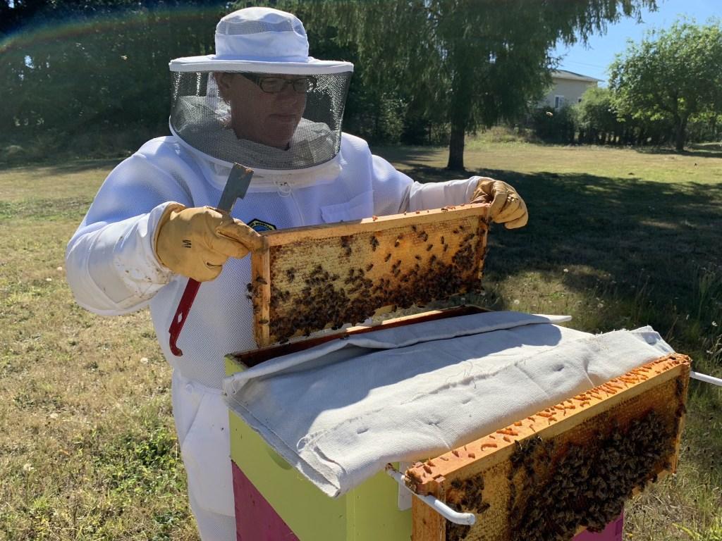 Apprentice Beekeeper Jenn