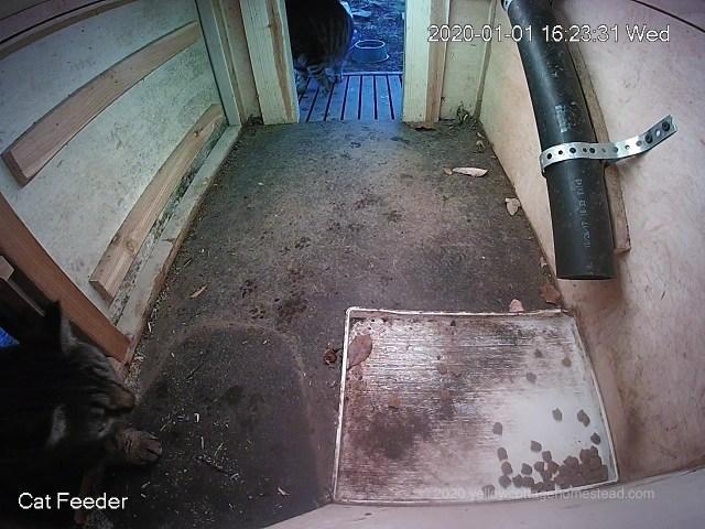 Entering door