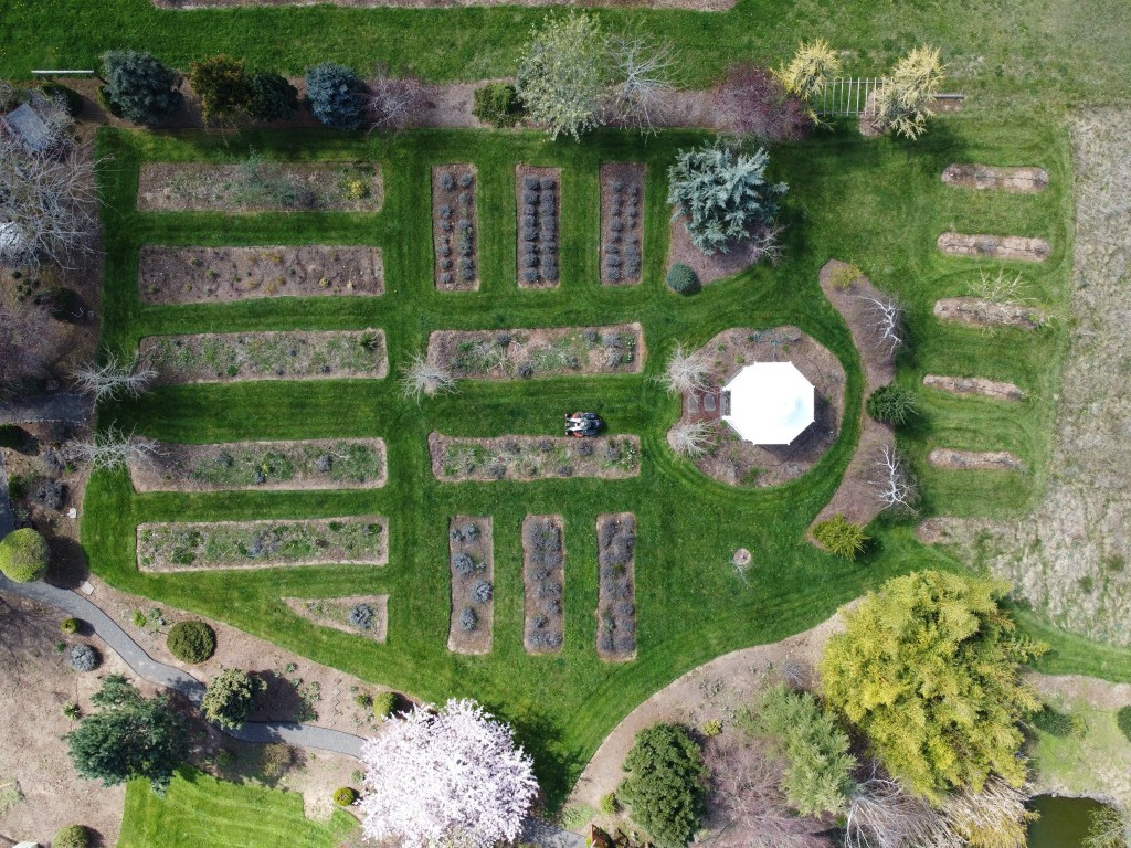 Aerial shot of flowerbeds and mower