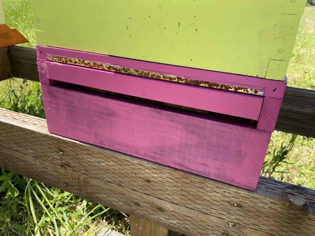 Hot pink hive base