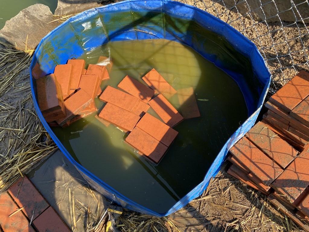 Removing pool