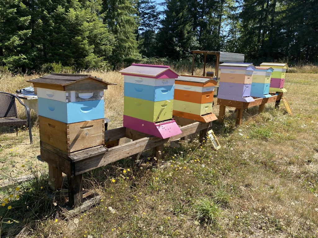 All hives