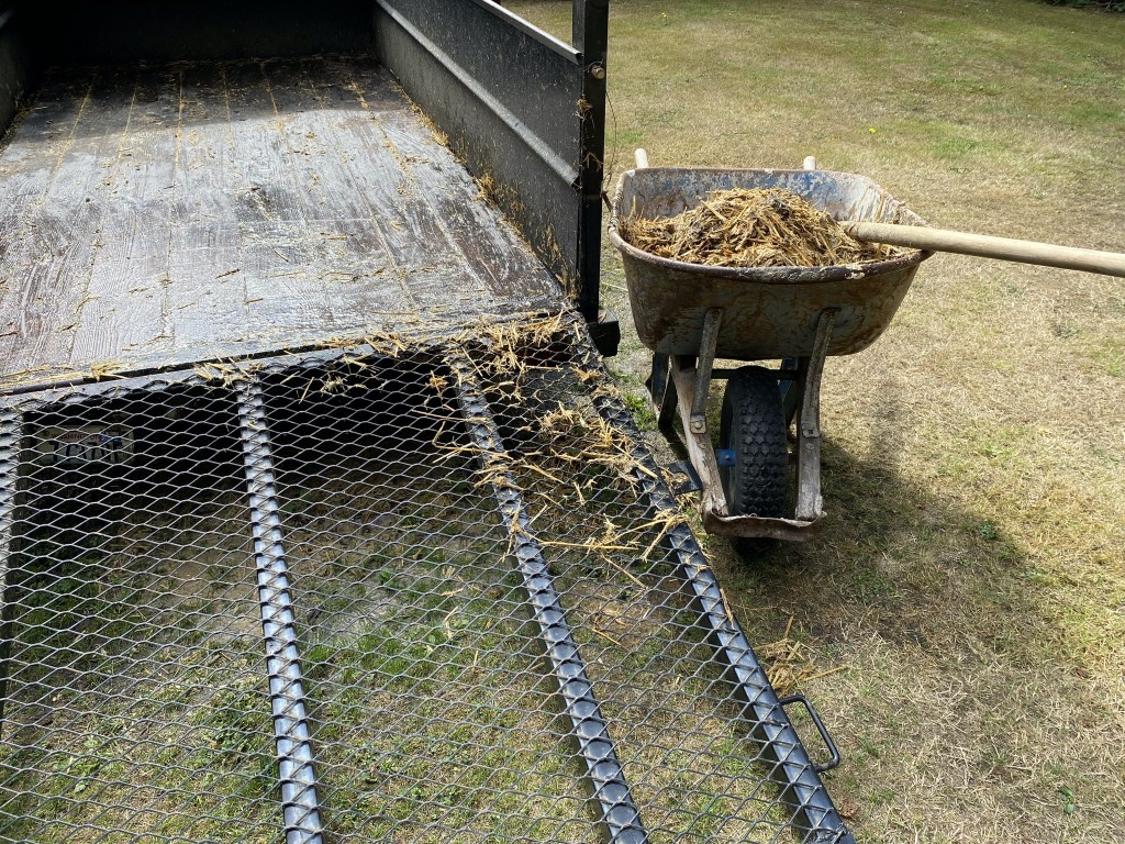 Mucking out trailer pen