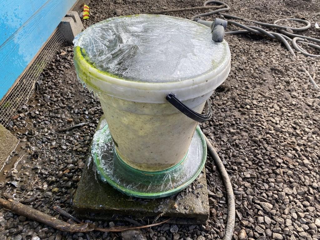 Frozen waterer