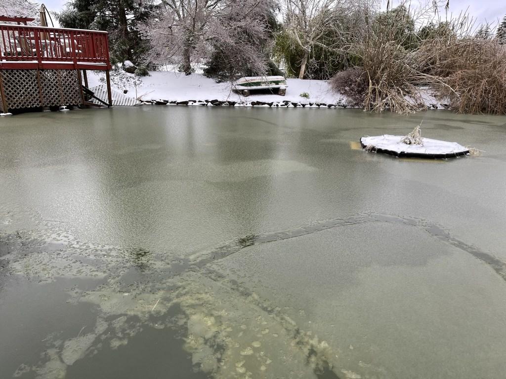 Slushy pond