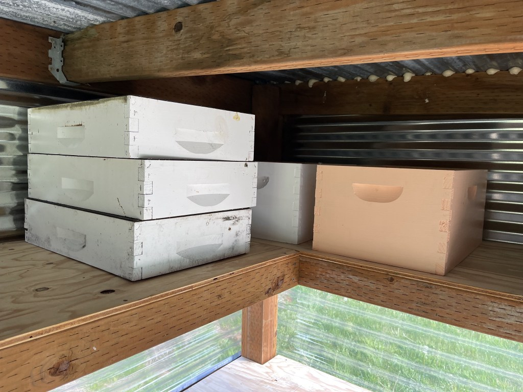 Hive boxes on shelves