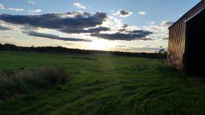 Yellow Hutch Farm, Braham Minnesota