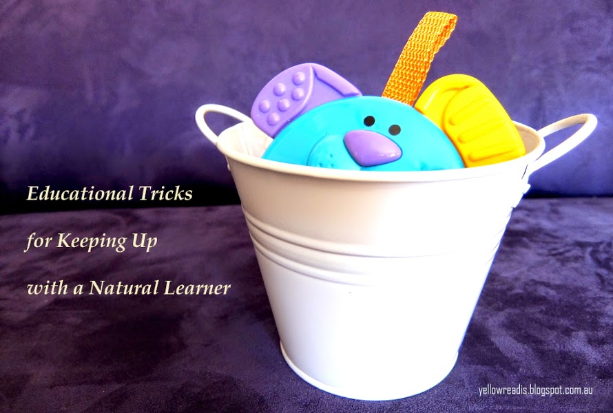Educational Tricks for Keeping Up with a Natural Learner, yellowreadis.com Image: You dog in white bucket