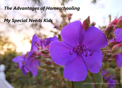 The Advantage of Homeschooling my Special Needs Kids, yellowreadis.com Image: Purple Flowers