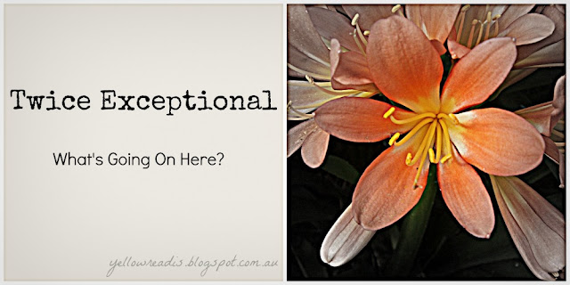 Twice Exceptional, What's Going on Here?, yellowreasis.com Image: Orange flowers