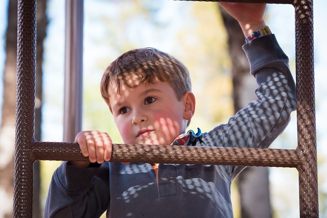 The Twice-Exceptional Child: Hidden in Plain Sight | Yellow Readis Picture: Boy climbing ladder