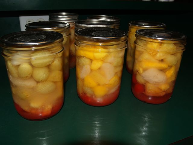 Fruit Cocktail for Canning (2/2)