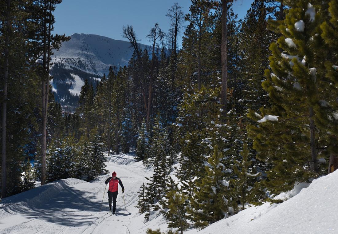 Nordic skiing is popular among members.