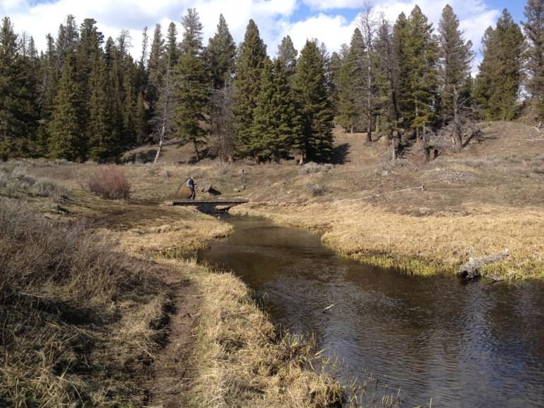 creek that feeds trout lake