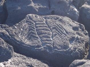 Modern day rock art in the rocks by the coast