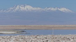 The views across the small lakes in the middle of the Salar were spectacular