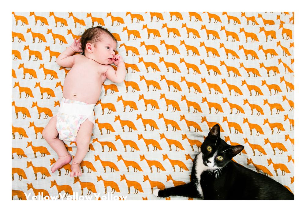 Baby Abby | Newborn Session-11984