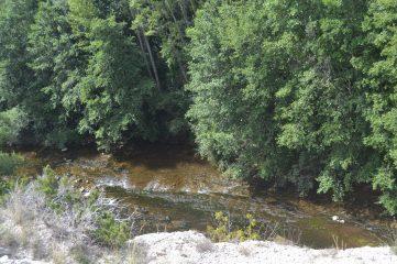 Río Nela desde la Penilla