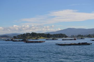 Isla de A Toxa