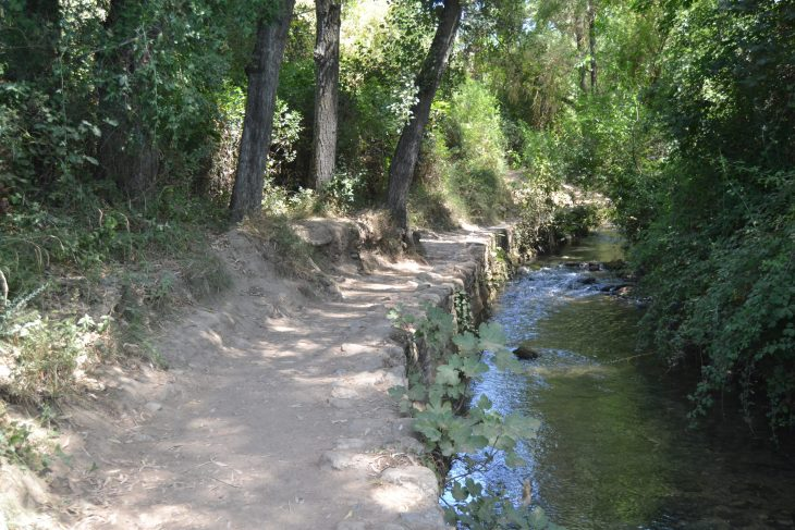 Camino junto al río Majaceite