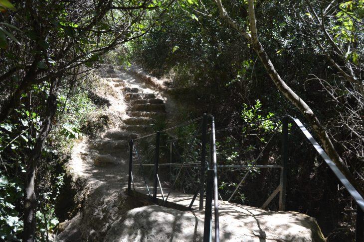 Puente y escaleras