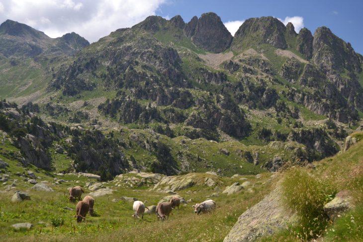 Vistas desde un cerro