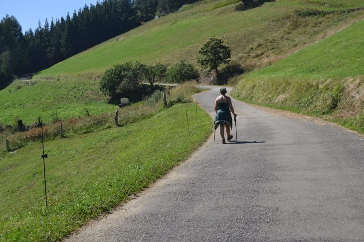 Subiendo por la carretera a Bustellin