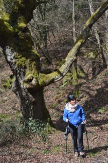 Esther caminando en el bosque