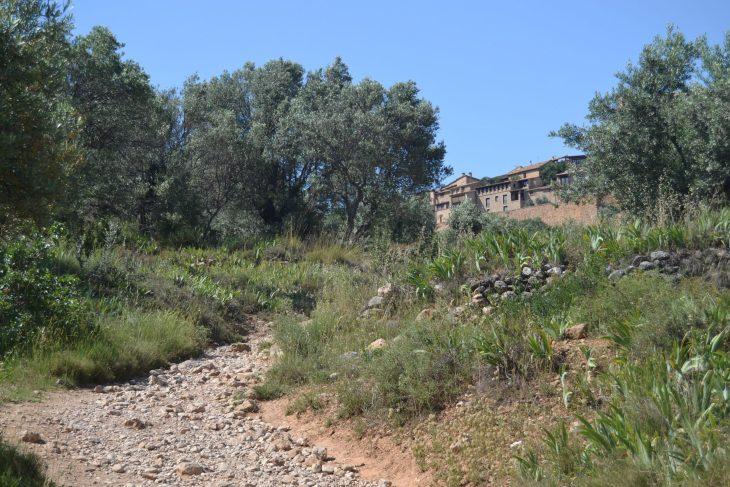 Camino a Alquézar