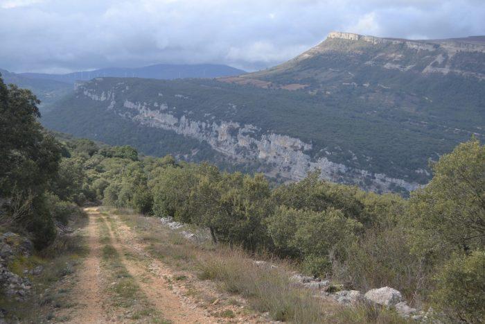 Camino del Monte de Rojo a Puentedey