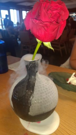 Rosa en hielo seco