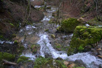 Cauce del arroyo
