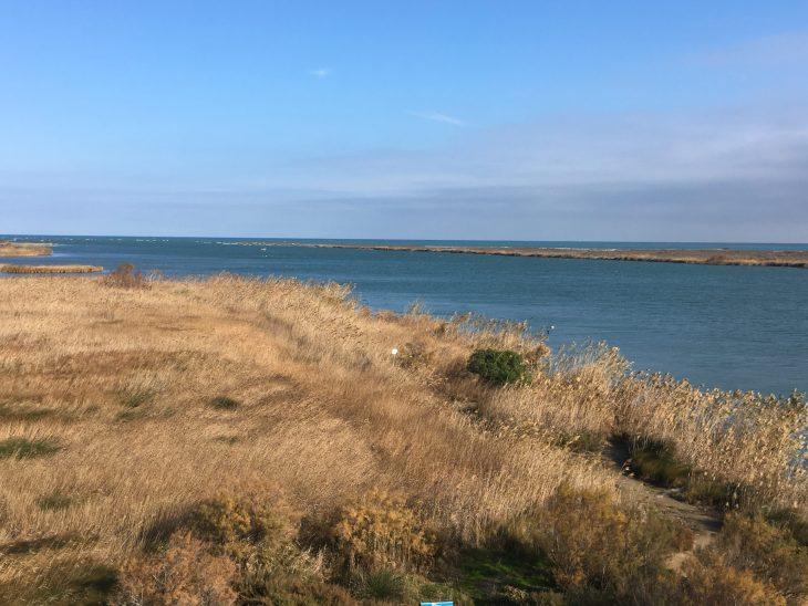 Desembocadura del Río Ebro