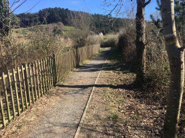 Camino hacia Kortezubi