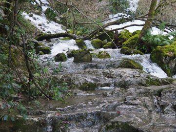 Nacimiento del Río Cadagua