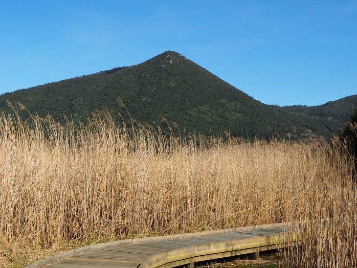 Monte Ereño y Marismas de Urdaibai