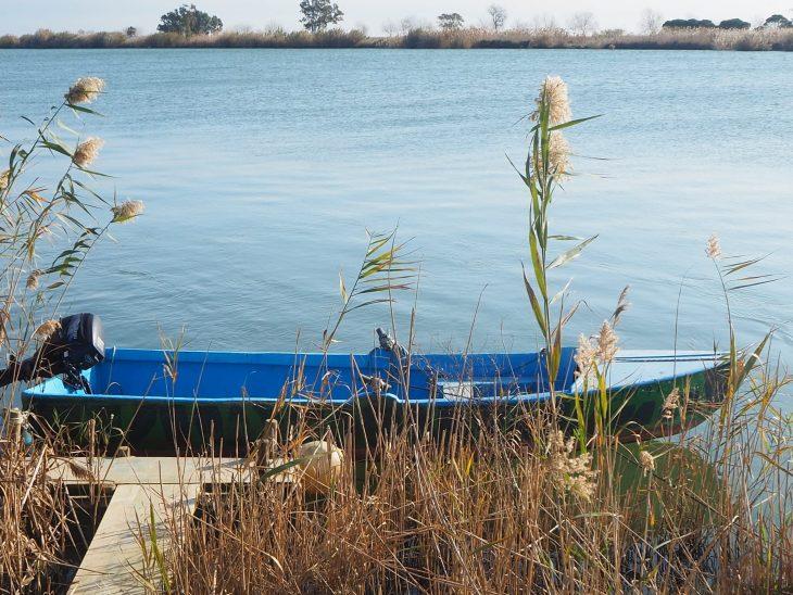Un día en el Delta del Ebro