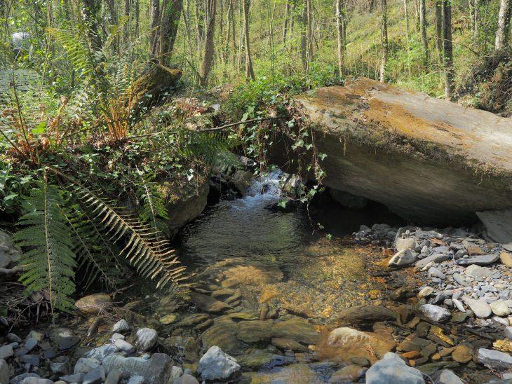 Ruta de la Cascada del Bolintxu en Bilbao