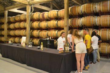 Cata de vinos y experiencia olfativa