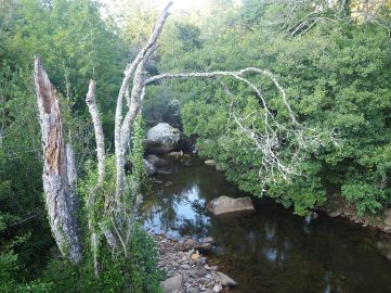 Río Engaña