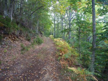 Ruta de la Cascada de la Salceda