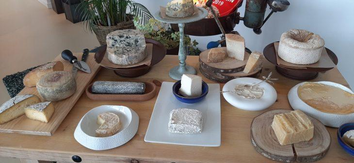 Degustación de quesos maridada