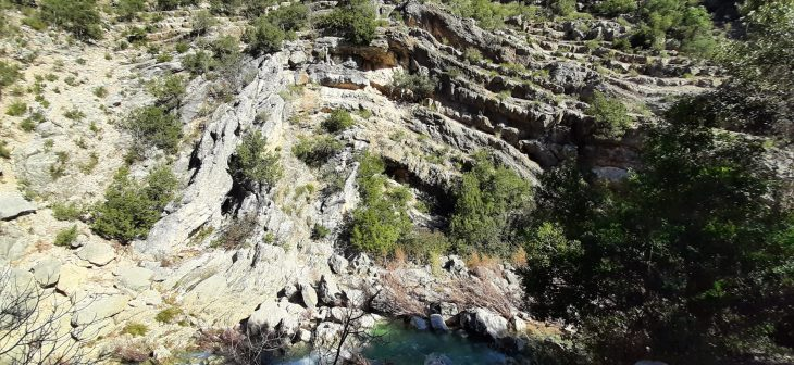 Pliegue del río Borosa