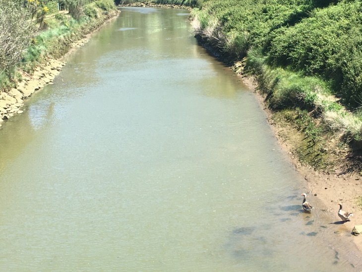 Río Barbadun de Muskiz