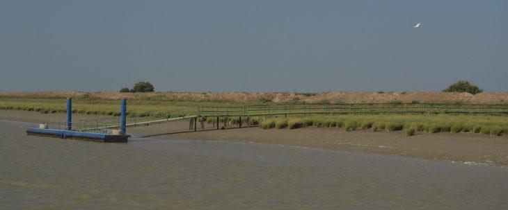 Muelle de Las Salinas