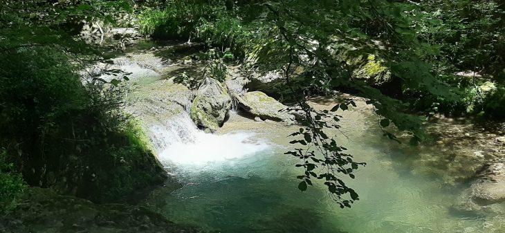 Río Purón