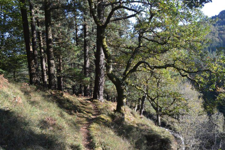 Ruta de la Cascada de Uguna